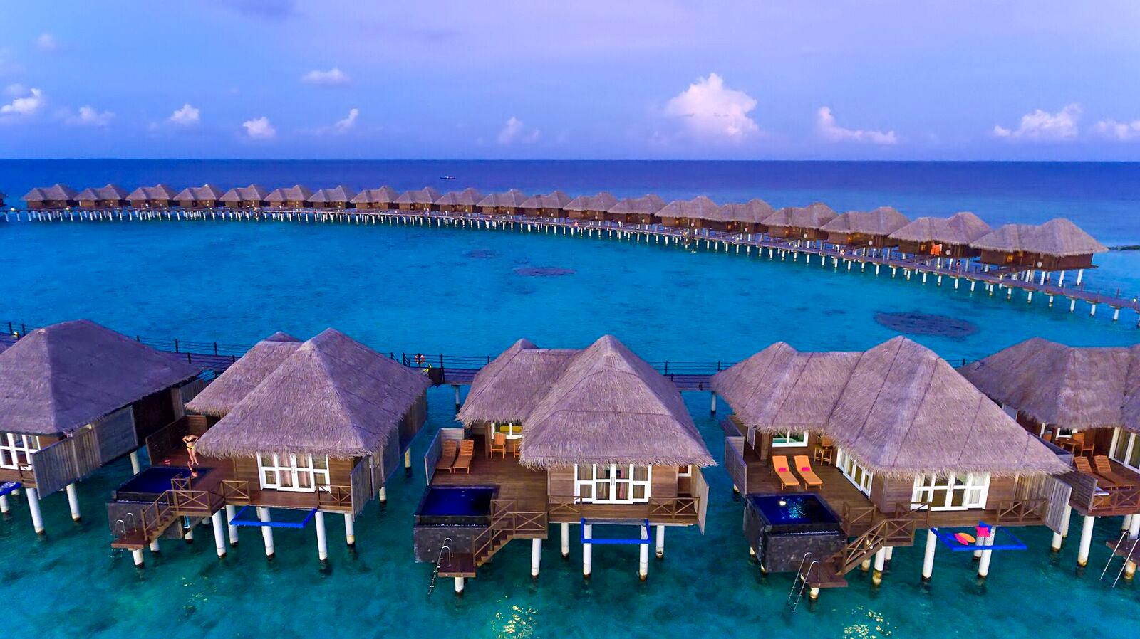 Vilu Reef Resort And Spa
